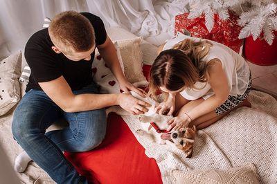 Familienhaftpflicht mit Hund (1)